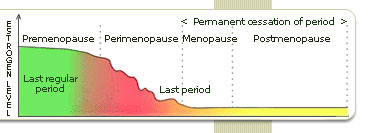 Read helpful information about Menopause Stages