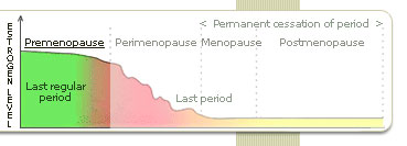 Treatments for all the Symptoms of Premenopause